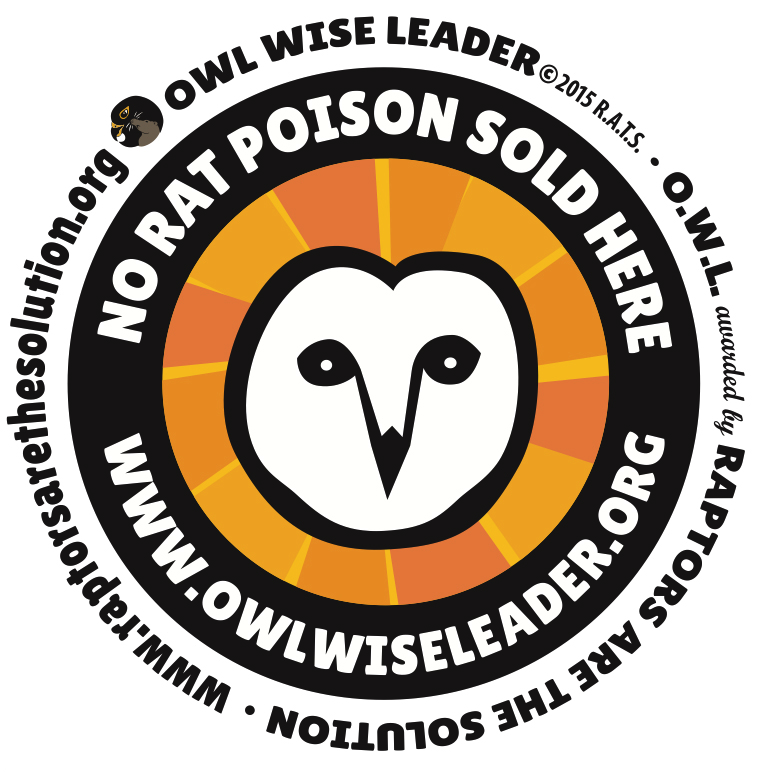 Owl Wise Leader - Free Display Materials |